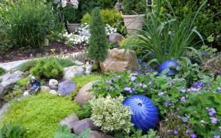 Рокарий из хвойников: фото и этапы создания мини-пейзажа из хвойных растений