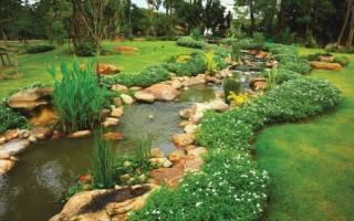 Как облагородить русло природного ручья на участке: идеи и их воплощение