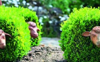 Несколько идей по декорированию сада или дачи