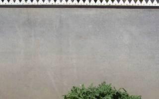 Как сделать забор из шифера своими руками — пошаговая инструкция, варианты сооружения и украшения с фото и видео
