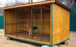 Вольер для собаки своими руками: домашние вольеры для маленьких и больших собак + фото