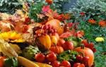Нужно ли перекапывать огород, удобрение и перекопка почвы