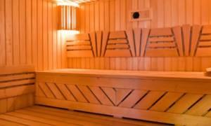 Устройство парной в собственной бане: все о вентиляции, полах и потолке + Видео