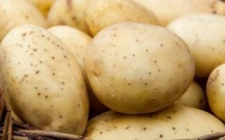 Картофель под напряжением или как увеличить урожай