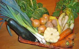 Нормы полива овощей и других огородных и садовых культур и тепличных растений