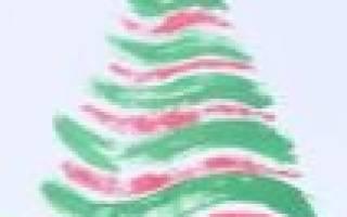 Какие деревья и растения украшают на Новый год в разных странах мира