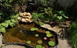 Водоем из старой ванны своими руками: как превратить металлолом в садовый пруд