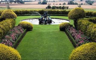 Партерный газон – это элитная лужайка с особым подходом к посеву и уходу