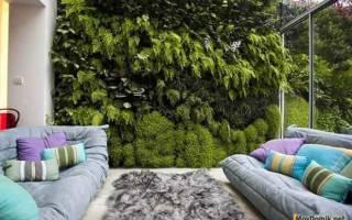 Дизайн зимнего сада в доме: фото интерьеров и идеи лучших проектов в разных стилях