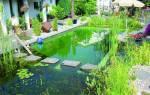 Плавательный пруд своими руками: пошаговая инструкция строительства водоема и фото