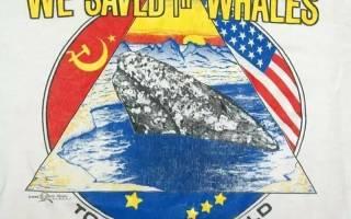 В Перу спасатели вместе с военными спасали кита