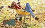 Дачные работу в саду осенью, подготовка к зиме + видео
