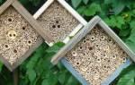 Как привлечь, на дачу, полезных насекомых