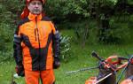 Садовые ножницы: выбираем инструмент для стрижки травы и деревьев