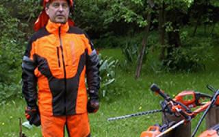 Как выбрать садовый пылесос-воздуходувку для уборки листьев с участка и других задач