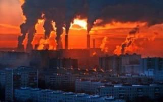 От глобального потепления спасет рациональное питание