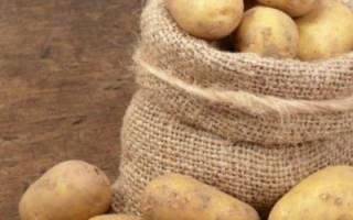Лучшие сорта картофеля для средней полосы России: описания с фото