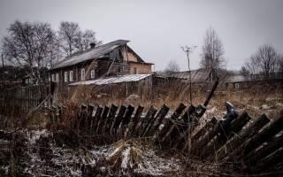 В Пензенской области установили солевые кормушки