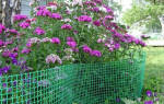 Садовая сетка: металлические и пластиковые конструкции для растений и качелей