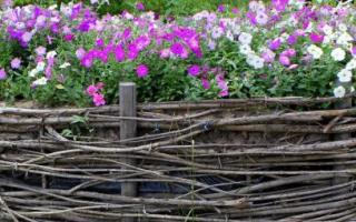 Декоративные ограждения для клумб своими руками: садовые хитрости