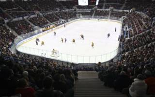 В Хабаровске сыграли в хоккей с тигренком