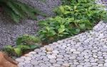 Создаем садовые дорожки своими руками: фото идеи