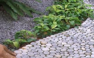 Как сделать дорожку из камней своими руками на даче: три варианта с описанием техники