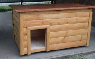 Как утеплить будку для собаки на зиму и сделать в ней автономное отопление