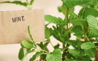 Ящик-этажерка для урожая своими руками