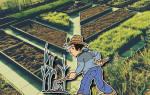 Ограждения для грядок: чем огородить цветы и овощи