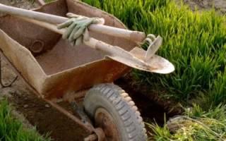 Как правильно спланировать огород, способы выращивания овощей, рациональное использование участка