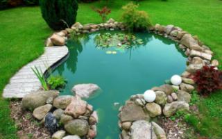 Бассейн из колеса своими руками за один день: инструкция по созданию водоема для дачи