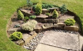 Рокарий в тени: выбор растений и обустройство каменистой клубы своими руками