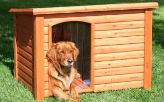Будка для собаки своими руками: готовые проекты и способы утепления конуры