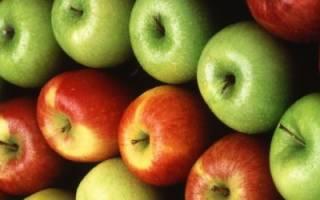 Хранение яблок зимой: как подготовить место для хранения, какие сорта подходят