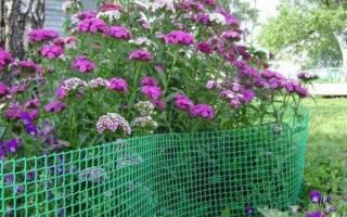Строительная сетка в саду-идеи для дачника