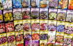 Значение букв на упаковках семян