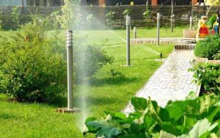 Системы полива: принцип работы и монтаж капельных и дождевальных установок