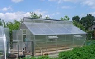 Метод Митлайдера: как вырастить огород на опилках, советы