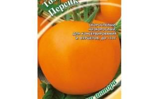 Интересный сорт томата — Персик