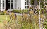 Ландшафтный дизайн дачного участка своими руками: что нужно для красоты и комфорта