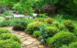 Как правильно делать садовые дорожки: из кирпича, асфальта, плит