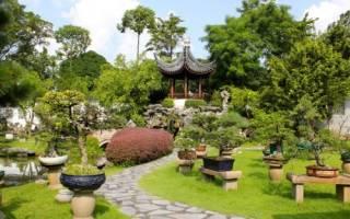 Сад в китайском стиле: фото основных элементов композиции