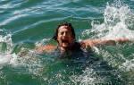 Акула напала на рыбаков и пыталась перевернуть лодку