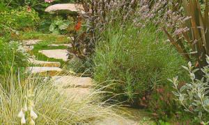 Чем окаймить дорожку в саду