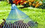 Как подготовить садовые деревья к зиме, как и чем укрывать, как защитить от вредителей