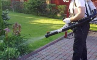 Как ухаживать за взрослым садом-полив