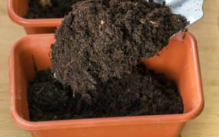 Готовим землю и емкости для выращивания рассады + видео