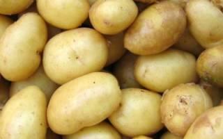 Картофель Адретта: описание сорта, преимущества и недостатки, посадка и уход + фото и отзывы