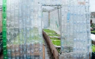 Как сделать теплицу из бутылок: строительство из пластиковой и стеклянной тары